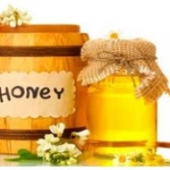 tips to export honey to europe