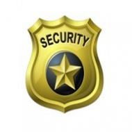 Marketing Strategies for a Security Company