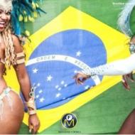 carnival 2014 rio