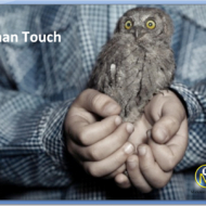 human touch3